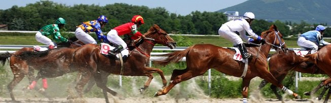 Focus on the jockey as much as the horse